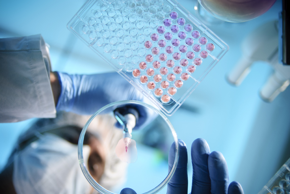 Develop and implement strategies for clinical research compliance